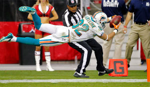 Brian Hartline stretches for an 80-yard score.
