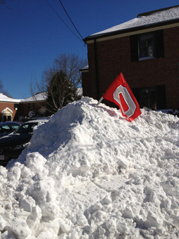 Can't no Nor'easter keep the Buckeye flag down