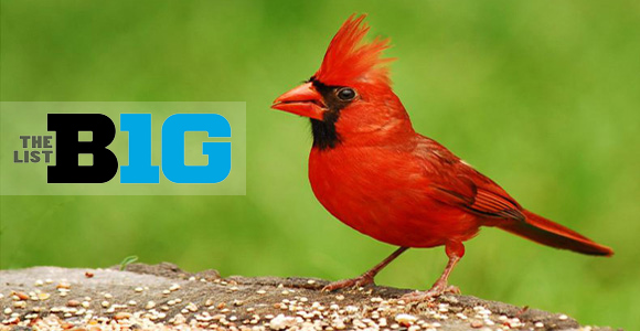 The B1G List: State Birds of the Big Ten