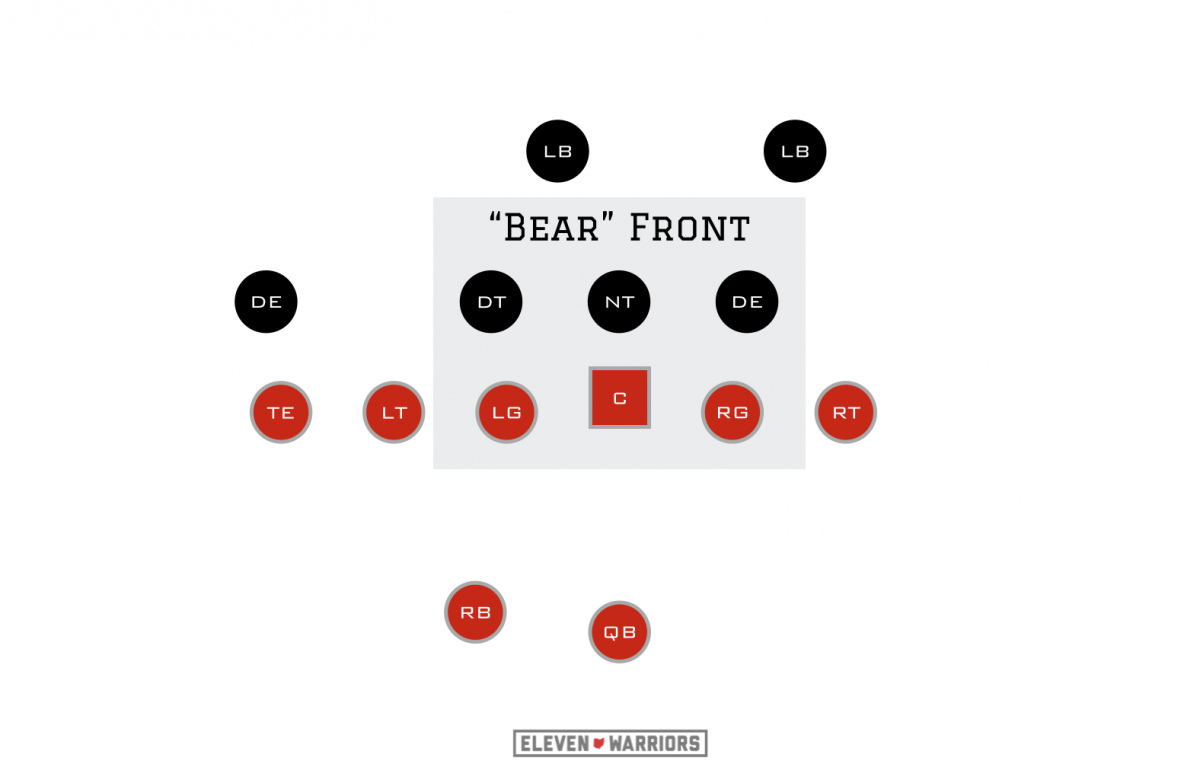 Bear front