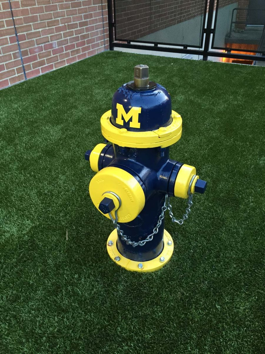 The Michigan fire hydrant in the dog-walking area at Ohio State's College of Veterinary Medicine