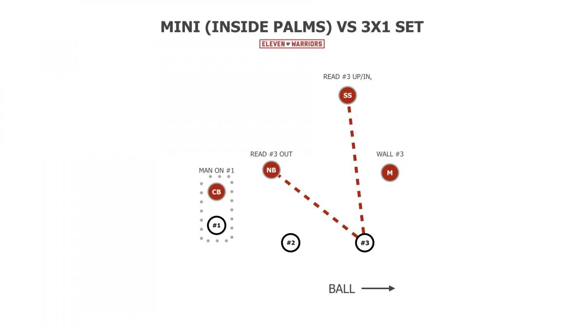 Ohio State Mini/Inside-Palms