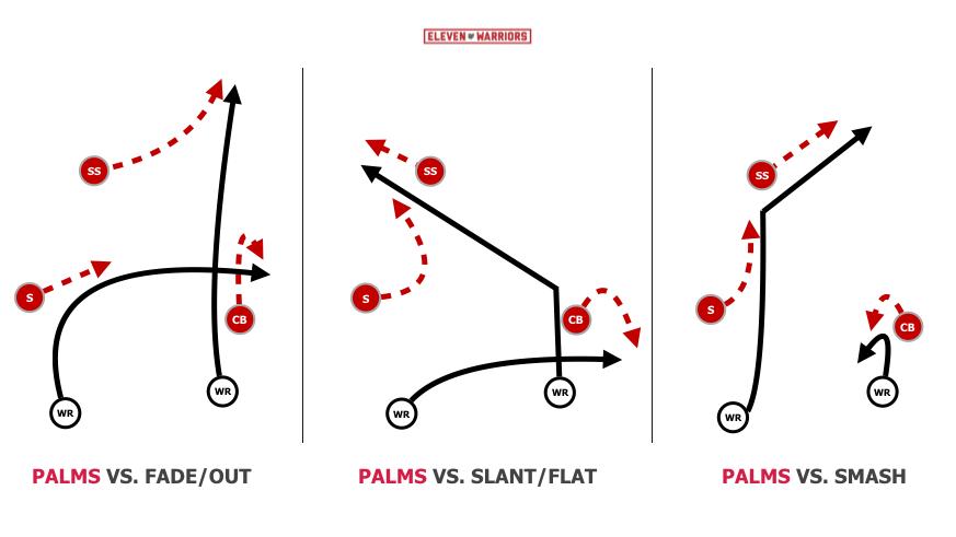 Basic 'Palms' Coverage