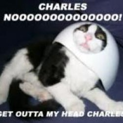 charles's picture