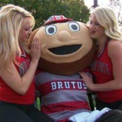 Brutus Buckeye's picture