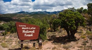 Manti-LaSal National Forest