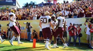 Minnesota players and fans celebrate a touchdown.