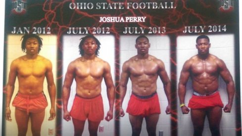 Joshua Perry has added more than 30 pounds of muscle at Ohio State in two years.