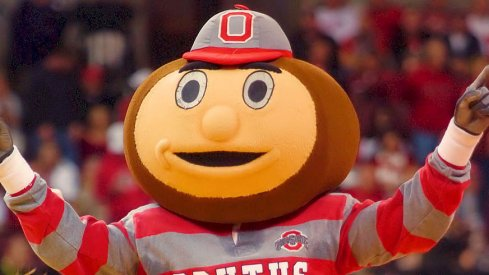 Brutus Buckeye is pretty jacked.
