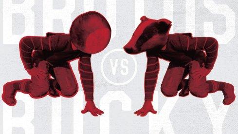 Brutus vs. Bucky