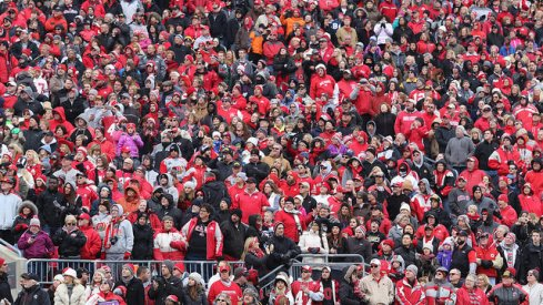 fans at saturday's celebration