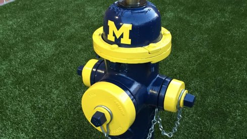 Michigan fire hydrant in the dog-walking area at Ohio State's College of Veterinary Medicine
