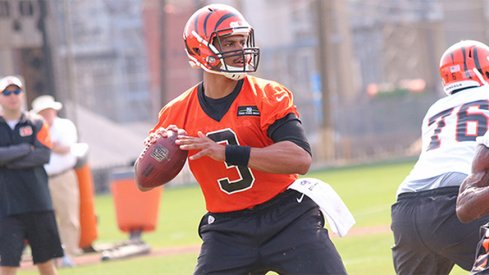 Terrelle Pryor during the first day of his Bengals' tryout.