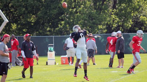 Torrance Gibson at wide receiver for the Buckeyes?