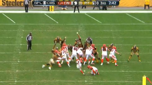 Cam Heyward terrorizing the NFL in a different manner.