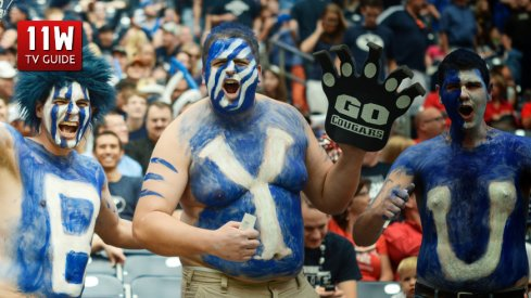 October 19, 2013: BYU fans cheer during the BYU Cougars game versus the Houston Cougars at Reliant Stadium in Houston, TX. Photographer: Robert Chambliss/Icon Sportswire