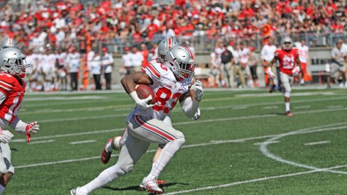Terry McLaurin was one of Ohio State's standout wide receivers this spring.