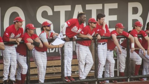 Ohio State's baseball team has climbed into the NCAA Tournament conversation.