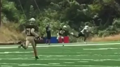 Mike Thomas one-handed grab.