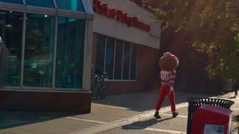 Brutus walking south past 12th Ave on High Street.