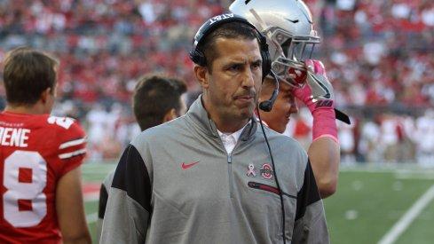 New Cincinnati head coach Luke Fickell will coach Ohio State during its College Football Playoff run.