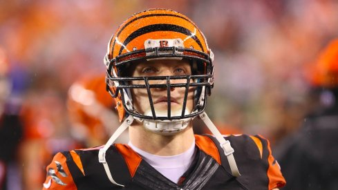 Former Ohio State and Cincinnati Bengals LB A.J. Hawk.