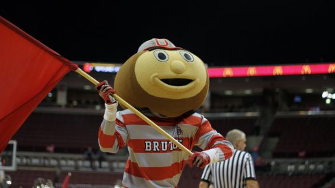 Brutus at the Big Ten tournament in 2015.