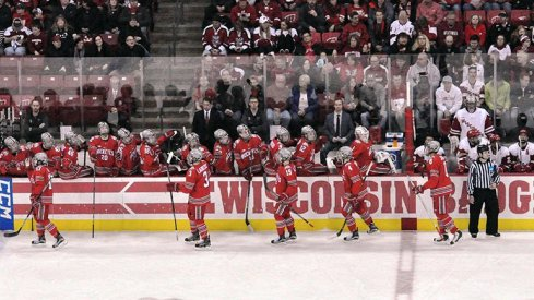 Ohio State men's hockey celebrates a goal against the Wisconsin Badgers.