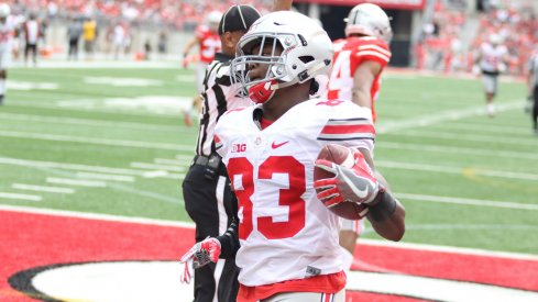 Terry McLaurin finds the end zone in Ohio State's spring game.
