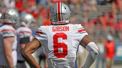 Former Ohio State wide receiver Torrance Gibson.