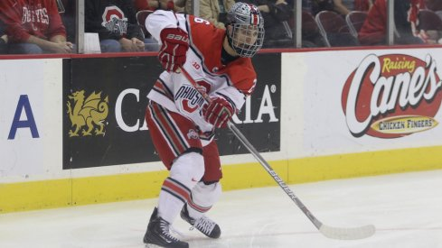 All-American forward Mason Jobst will be a vital part to the Buckeyes' offense in 2017-2018.