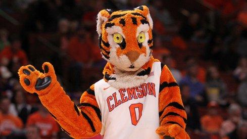 Clemson's wack-ass mascot.