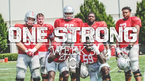 Week Three Camp Highlights
