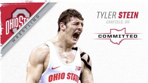 Tyler Stein