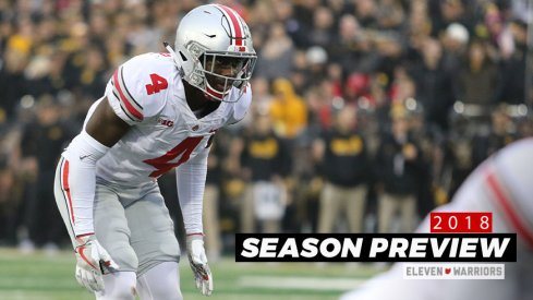 Ohio State's Jordan Fuller will lead a talented group of defensive backs this fall.