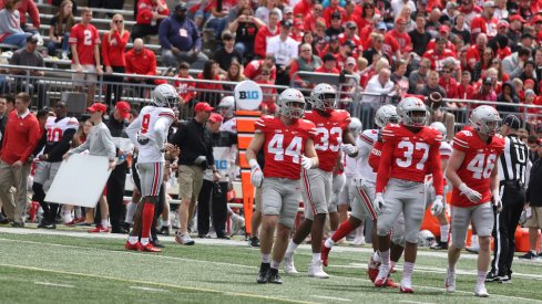 Scarlet and Gray match up against each other in 2019 Spring Game.