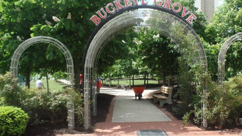 The archway leading into Buckeye Grove