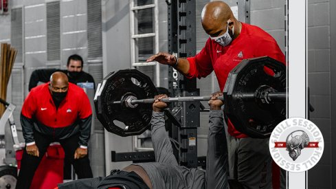The buckeye are getting stronger in today's skull session.