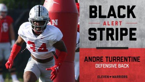 Andre Turrentine