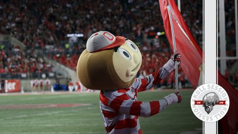 Brutus is waving a flag in today's skull session.
