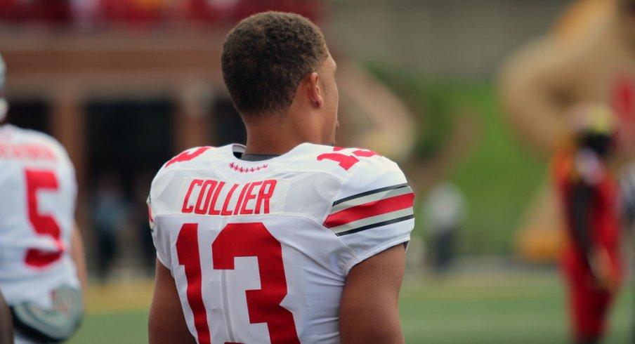 Stephen Collier