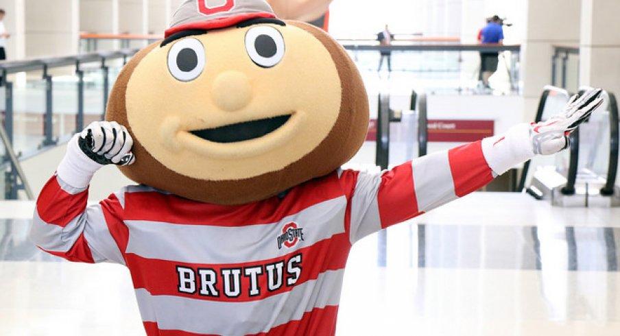 Brutus Buckeye.