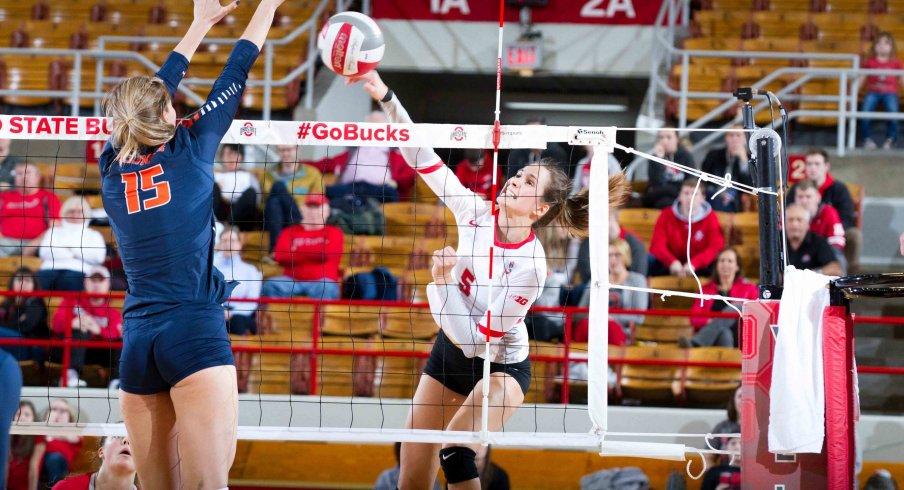 Ohio State women's volleyball
