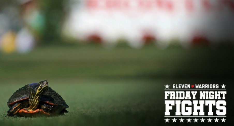 Feb 23, 2018; Palm Beach Gardens, FL, USA; A turtle crosses the tee box on the 2nd during the second round of The Honda Classic golf tournament at PGA National (Champion). Mandatory Credit: Jasen Vinlove-USA TODAY Sports