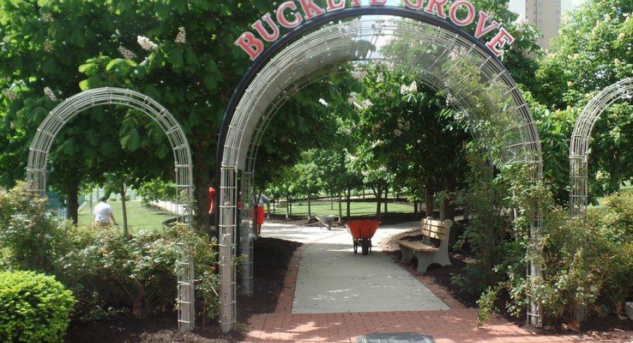 The archway leading into Buckeye Grove