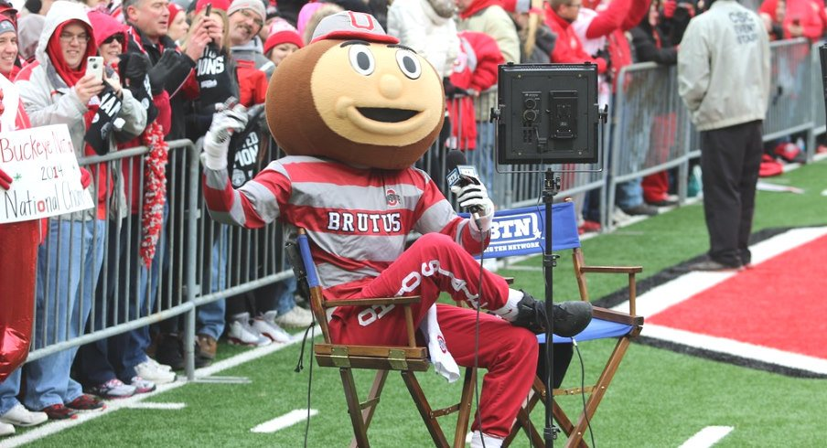 Brutus Buckeye Being a Boss